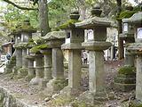 http://satsuki.sk/image/20090104_007.html