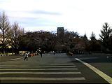 http://satsuki.sk/image/20090401_006.html